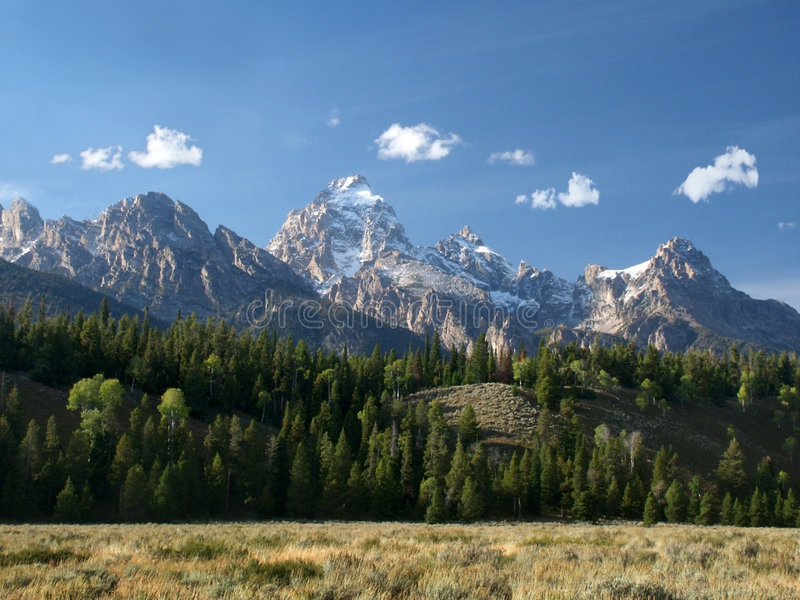 Tetons grand, collines et prairie images stock