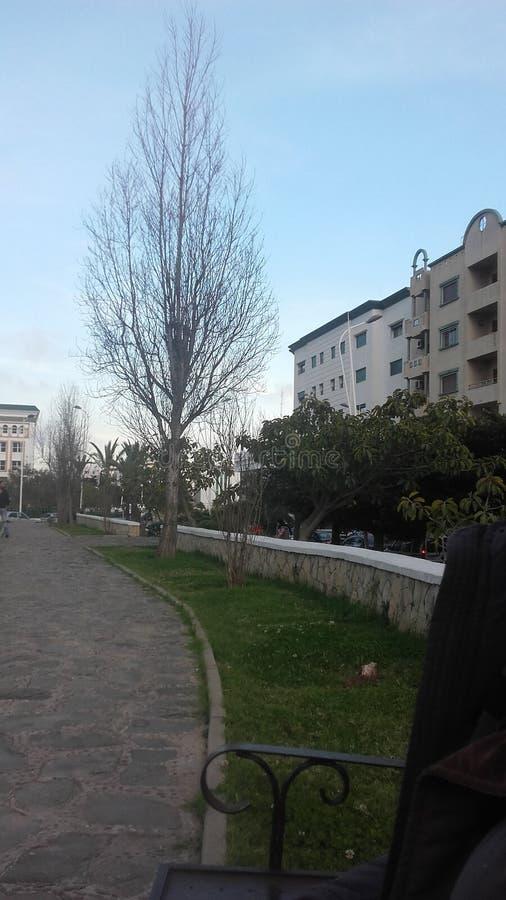 tetouan wilaya royalty-vrije stock foto