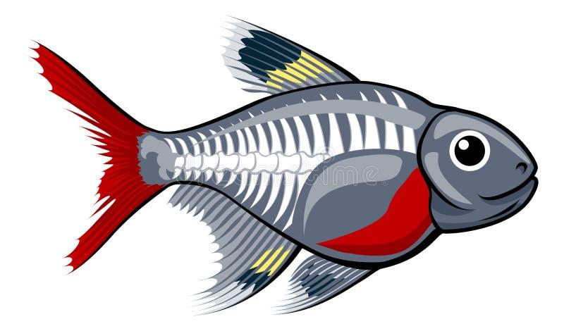 Tetra tecknad filmfisk för röntgenstråle stock illustrationer