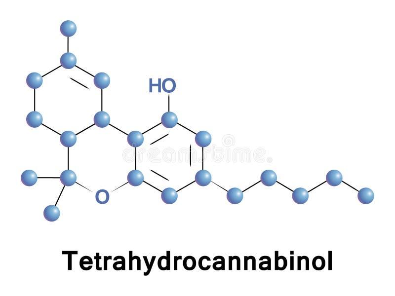 Tetrahydrocannabinol psychoactive drug. Tetrahydrocannabinol is the principal psychoactive constituent or cannabinoid of cannabis. THC in Cannabis is assumed to stock illustration