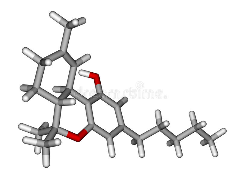 Tetrahydrocannabinol sticks molecular model. Optimized molecular model of Tetrahydrocannabinol (THC), the psychoactive constituent of the cannabis plant vector illustration