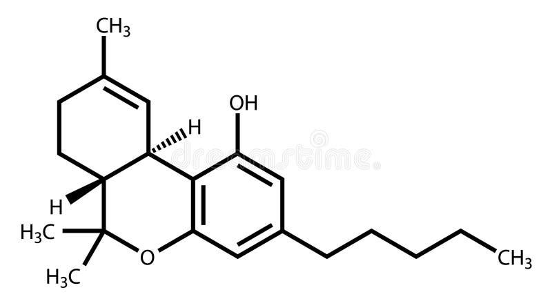 Tetrahydrocannabinol structural formula. Structural formula of Tetrahydrocannabinol (THC), the psychoactive constituent of the cannabis plant stock illustration