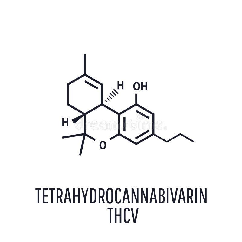 Tetrahydrocannabivarin THCV Tetrahydrocannabivarin Chemical formulas of natural cannabinoids vector illustration
