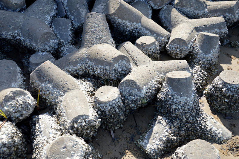 Download Tetrapods on the beach stock image. Image of coastal - 35137633