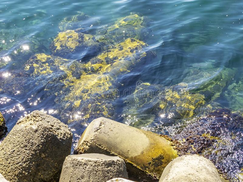 Tetrapods en el puerto de Primorsko, costa costa del Mar Negro del búlgaro imagen de archivo libre de regalías