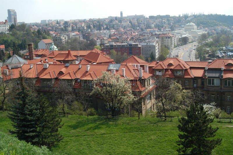 Tetti a Praga immagini stock libere da diritti