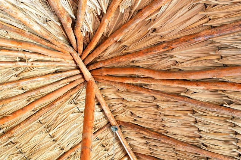 Tetto a foglia di palma fotografie stock