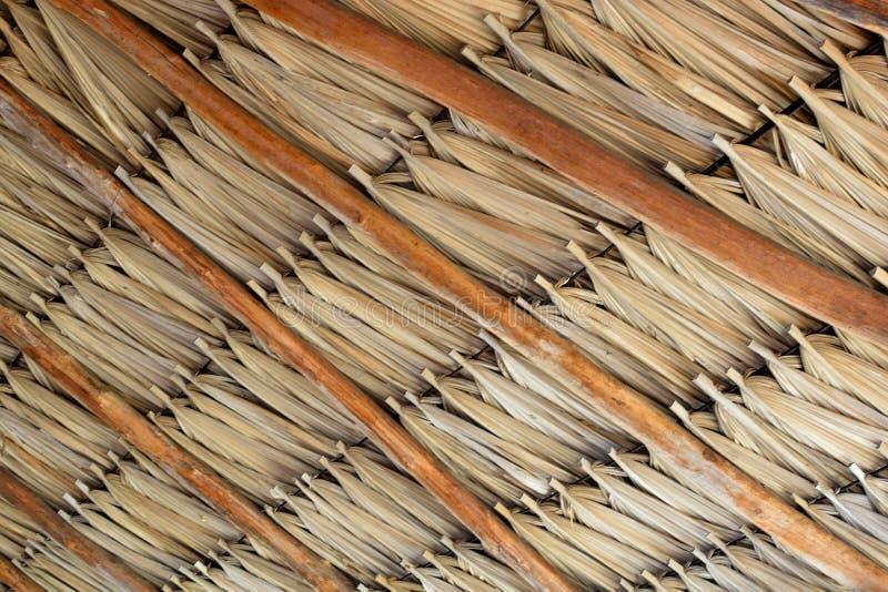 Tetto a foglia di palma fotografia stock libera da diritti