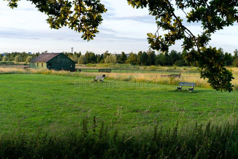Download Tettoia Su Terreno Coltivabile Fotografia Stock - Immagine di estate, banchi: 56887072