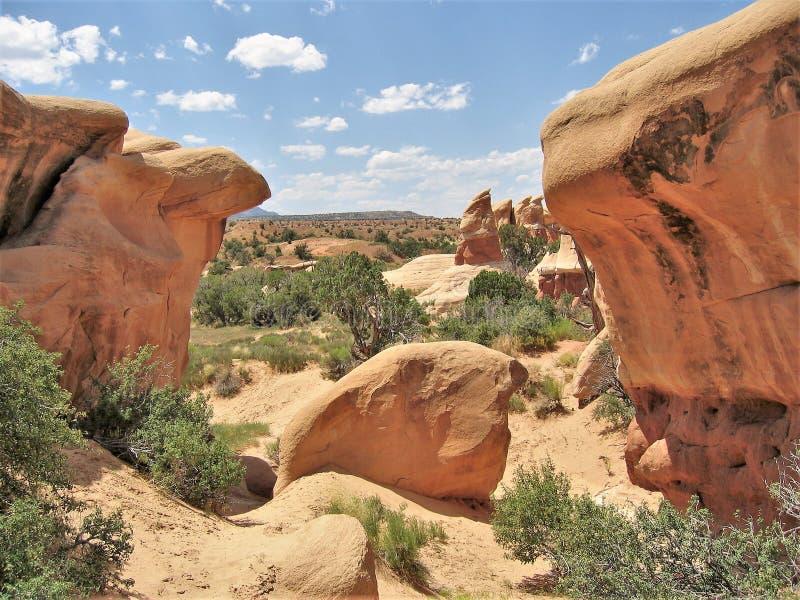 Teufel ` s Garten-Sandsteinformationen stockfotografie