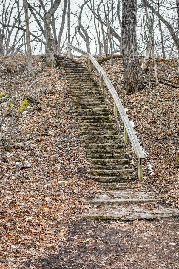 Teufel-Treppenhaus - Eiszeit-Spur - Janesville, WI stockbilder