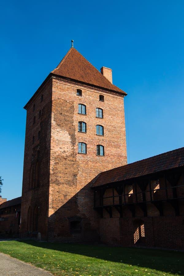 Teutonic middeleeuws Malbork-Kasteel, Polen royalty-vrije stock fotografie