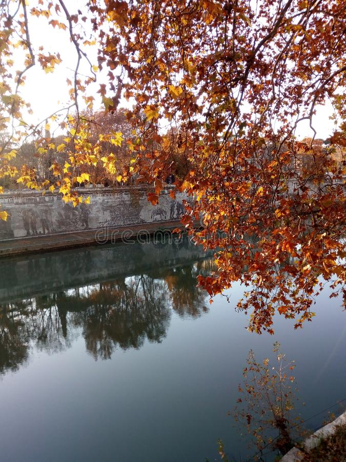 Tevere, Roma. Lungo Tevere autunno royalty free stock photo