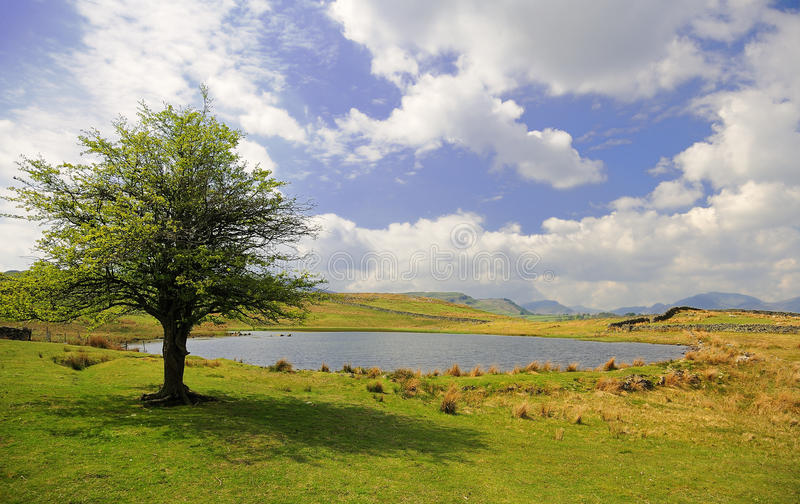 Tewet Tarn, Lake District, Cumbria. One of the many small tarns (lake), in the Lake district national park, is Tewet tarn. Nestled above Keswick on a hilltop royalty free stock photo