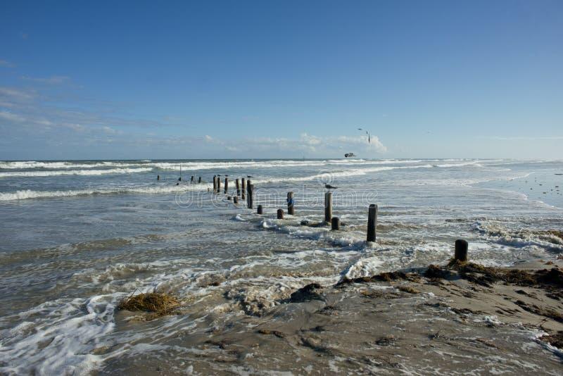 Texas Beach stock foto's
