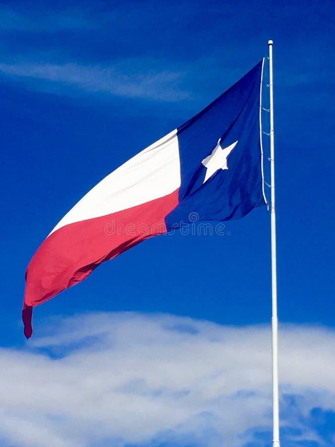 Texas Flag stock foto's