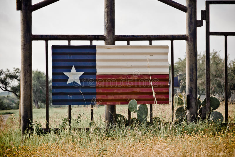 Texas flaggakonst royaltyfri bild