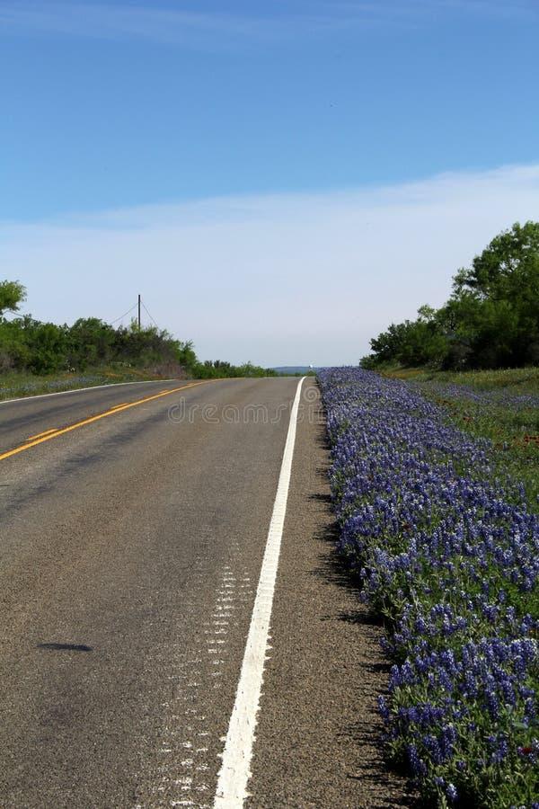 Texas Highway in de Lente royalty-vrije stock fotografie