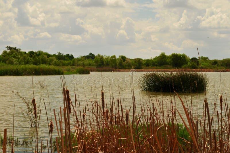 Texas Lake meridional, Rio Grande Valley foto de archivo