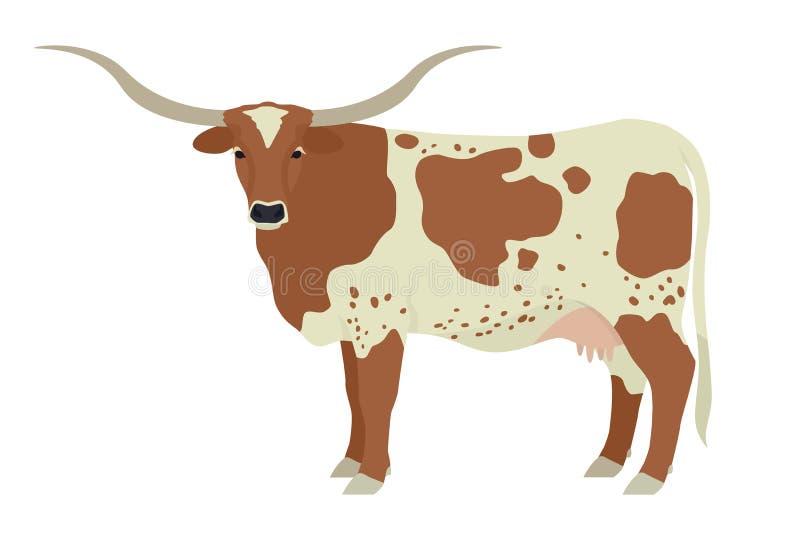 Texas Cow Stock Illustrations 3 654 Texas Cow Stock Illustrations Vectors Clipart Dreamstime