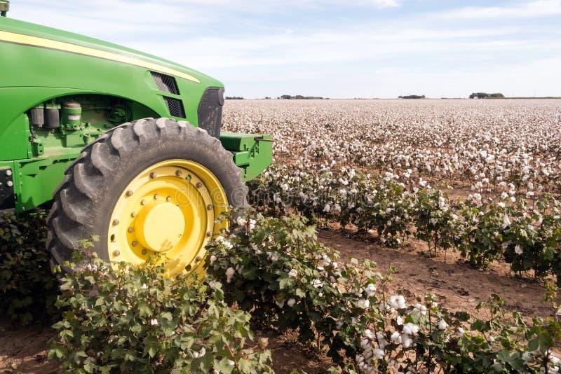 Texas Plantation Tractor Agriculture Cash för bomullslantgårdfält skörd royaltyfri foto