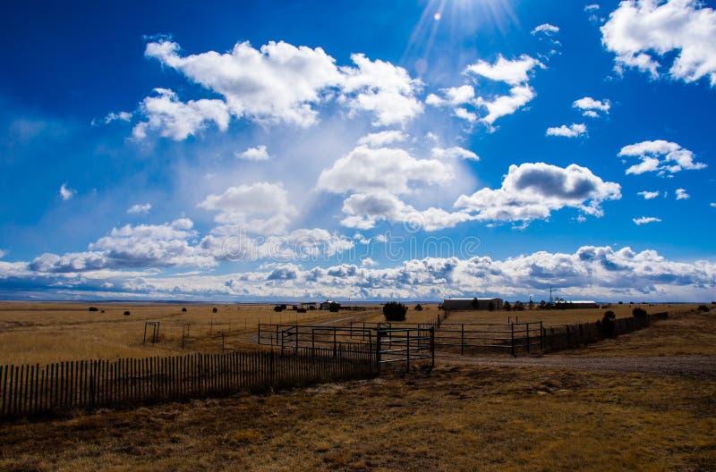Texas Ranch Amarillo High Lands av det Lone Star tillståndet arkivbilder