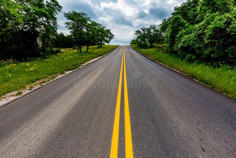 Texas Road com os Wildflowers no lado imagem de stock
