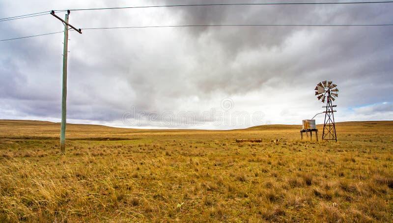 Texas roda dentro o interior em Tumut Austrália fotografia de stock royalty free