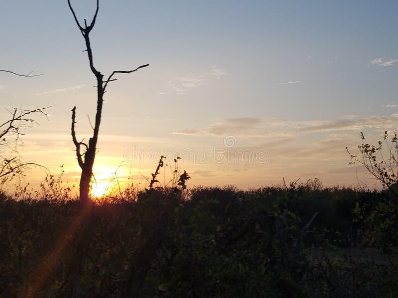 Texas sky stock image
