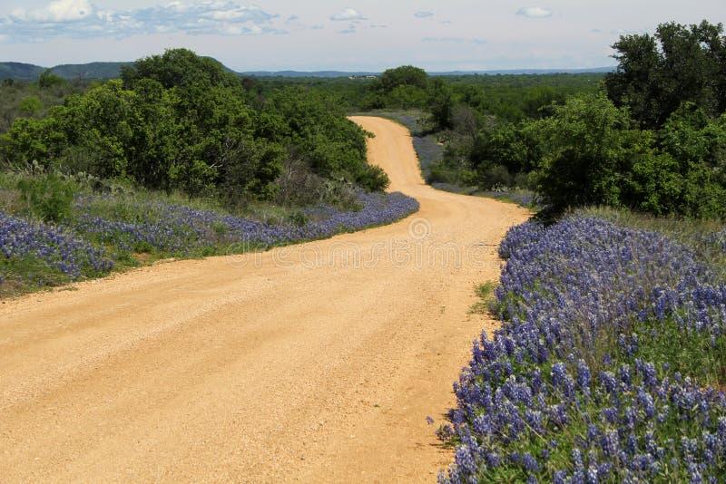 Texas Spring foto de archivo