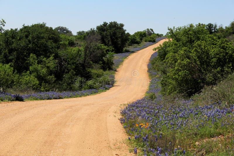 Texas Spring stock fotografie