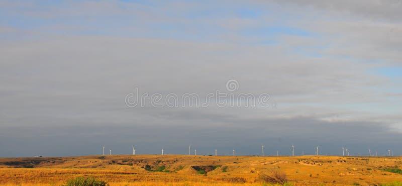 Texas Windmills avec le ciel bleu et les vagues d'or des herbes indigènes photo stock