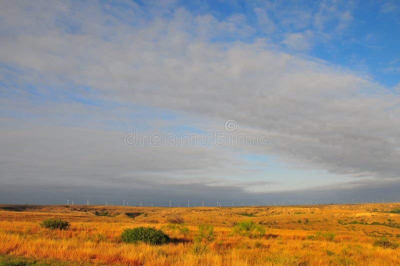 Texas Windmills avec le ciel bleu et les vagues d'or des herbes indigènes images libres de droits