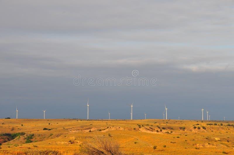 Texas Windmills avec le ciel bleu et les vagues d'or des herbes indigènes photos stock