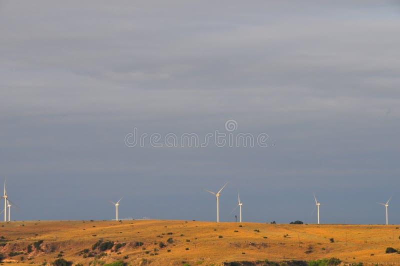 Texas Windmills avec le ciel bleu et les vagues d'or des herbes indigènes photographie stock