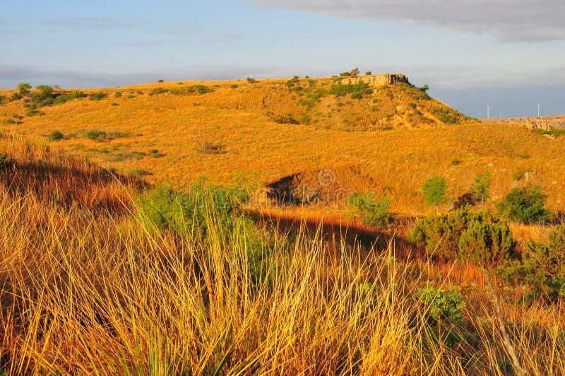 Texas Windmills met Blauwe Hemel en Gouden Golven van Inheemse Grassen royalty-vrije stock fotografie