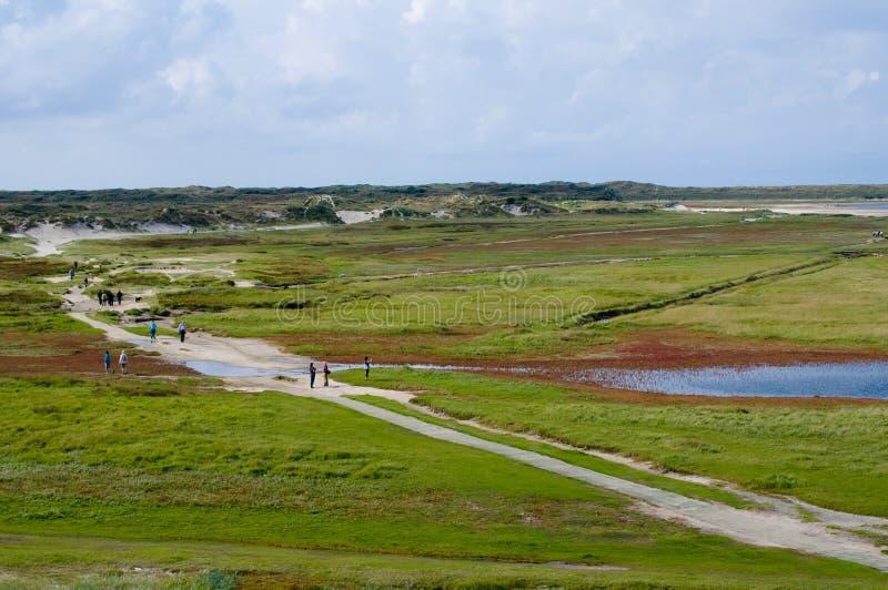 texel ландшафта острова Голландии стоковое изображение rf