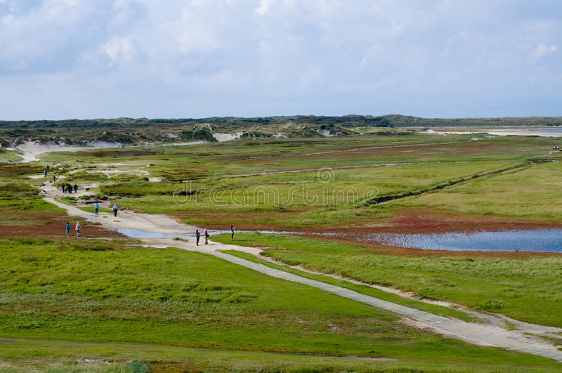 Texel island landscape Holland royalty free stock image