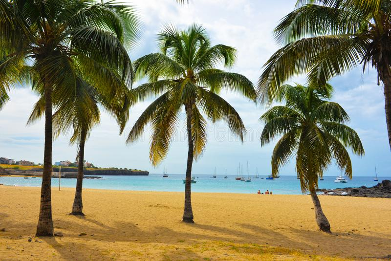 Cape Verde, Tarrafal Bay Beach, Coconuts Trees on Sand, Tropical Landscape, Santiago Island royalty free stock images