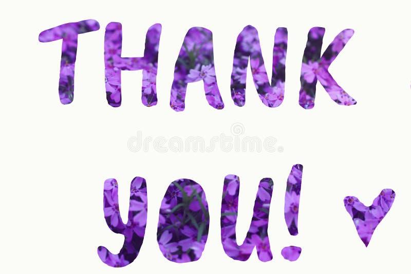 Text danken Ihnen machte vom purpurroten Sommerblumenhintergrund stockfotos