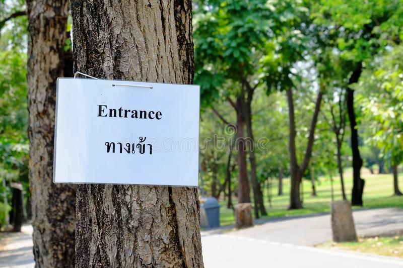 A text of Entrance on white paper board hanging on a tall tree royalty free stock photography