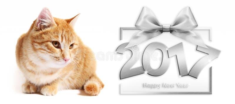 text för lyckligt nytt år för silver 2017 och ingefärakatt på vit royaltyfri bild