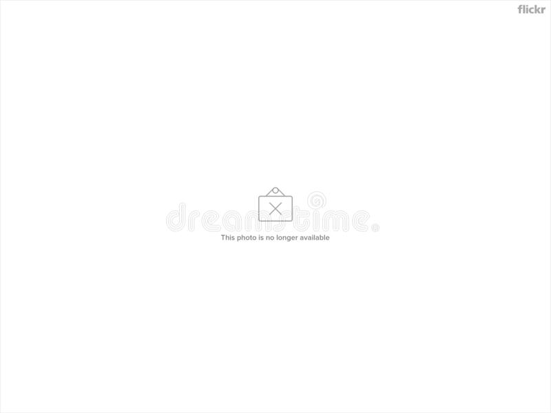 Text, Font, Product, Black And White stock photo