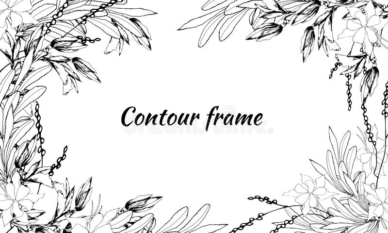 black and white frame outline decorative flowers  stock illustration