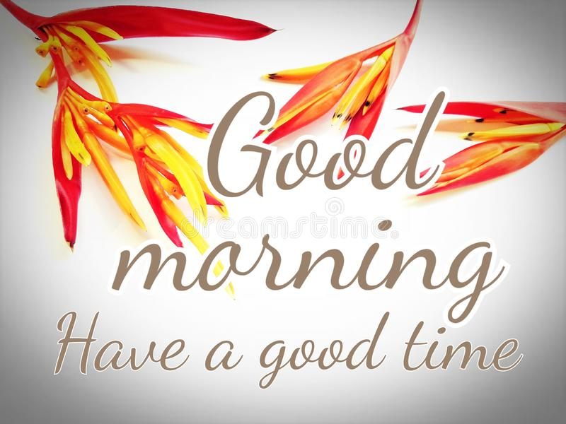 Text good morning, have a good time with heliconia vector illustration