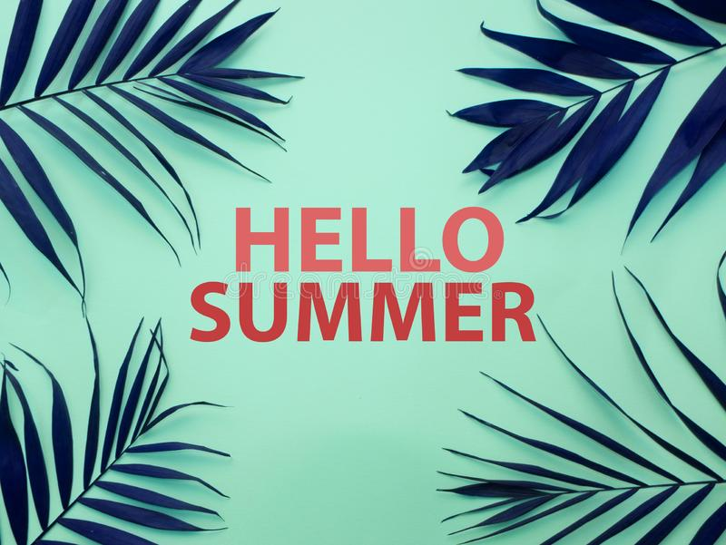 Text HELLO SUMMER and tropical leaves stock image
