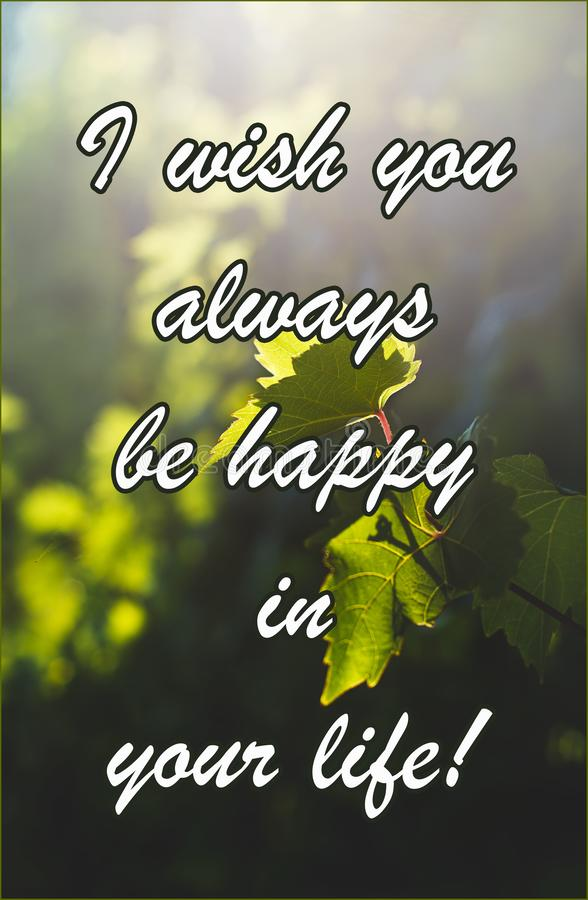 Text. I wish you always a happy life. A grape leaf is lit by the sun. Grapevine royalty free stock photo