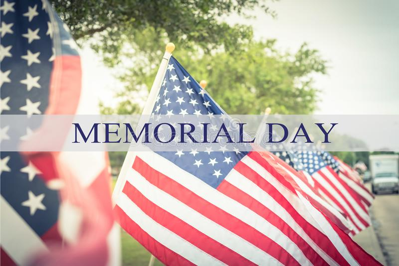 Text Memorial Day on row of lawn American Flags stock images