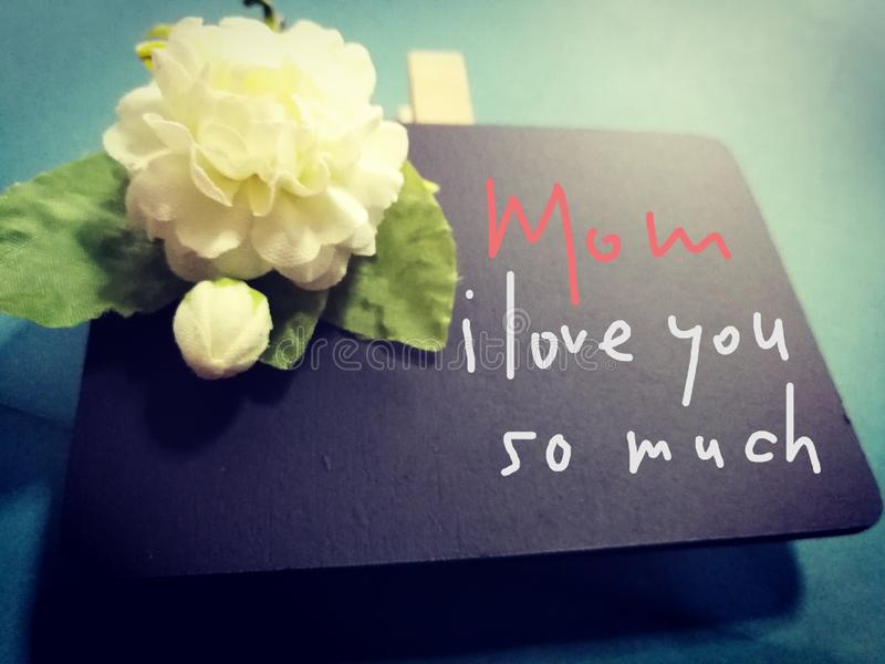 Text Mom, i love you so much on blackboard with jasmine flower, mothers day, Thailand stock photo