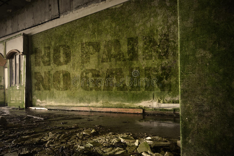 Text no pain no gain on the dirty wall in an abandoned ruined house stock photo